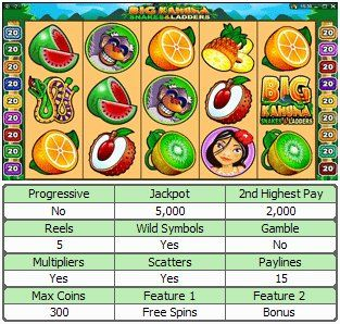 Big Kahuna : Snakes and Ladders Online Slot Machine