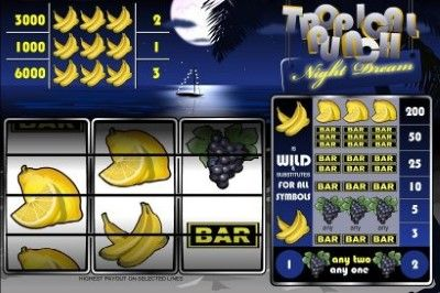 Tropical Punch - Night Dreams Online Slot Machine