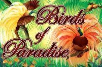 Birds of Paradise Online Slot Machine