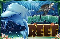 Dolphin Reef Online Slot Machine
